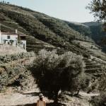 QuintaDaGricha_Churchills_SuvelleCuisine_043